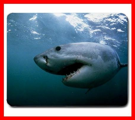 Great White Shark Gansbaai  Mouse Pad MousePad Mat 229