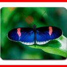 Blue Rare Butterfly Fly Insect Mouse Pad MousePad Mat 230