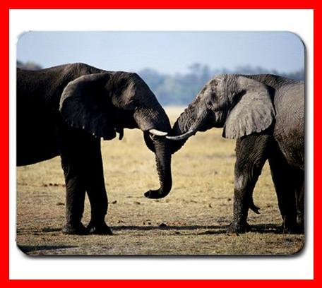 Two Elephant Greeting Mouse Pad MousePad Mat 232