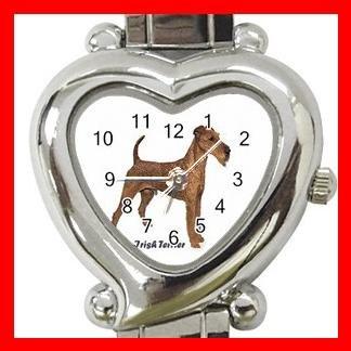 Irish Terrier Dog Pet Hobby Italian Charm Wrist Watch 024