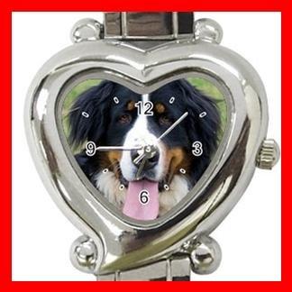 Bernese Mountain Dog Pet Hobby Italian Charm Wrist Watch 065