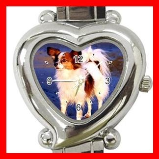 Papillon Dog Pet Hobby Italian Charm Wrist Watch 087