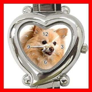 Pomeranian Dog Pet Hobby Italian Charm Wrist Watch 089