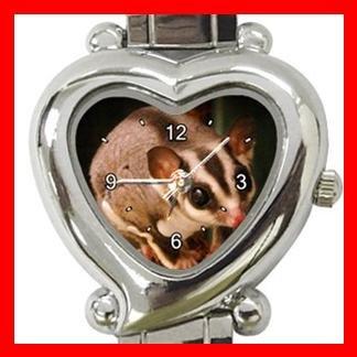 Sugar Glider Animal Italian Charm Wrist Watch 106