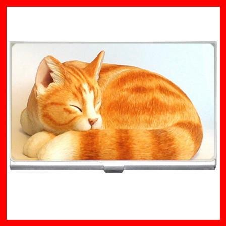 Ginger Cat Sleeping Animals Hobby Business Credit Card Case 07