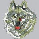 1788 Fox Face (DST)