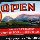 Beautiful OLD S. Carolina OPEN SKY PEACH Basket Label