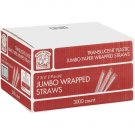 Jumbo Wrapped Straws  (3000ct)