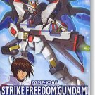 1/100 MG Strike Freedom Gundam SEED Destiny No.9