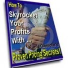 How To Sky Rocket Your Profits With Proven Pricing Secrets