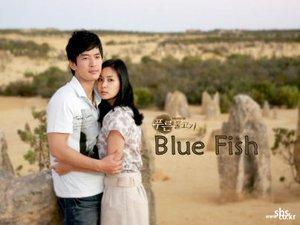 Korean drama dvd: Blue fish, english subtitles