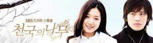 Korean Drama DVD: Tree of Heaven, English subtitles