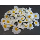 White Daisy Pieces    500 pieces
