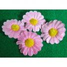 Pink daisy pieces