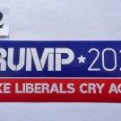 Donald Trump Bumper Sticker Trump 2020 Make Liberals Cry Again