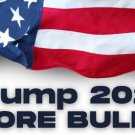Trump 2024 No More Bullshit 3 inch x 8 inch Bumper Sticker