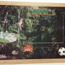 Brazil Picture/Photo Frame 11-551