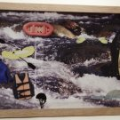 White Water Rafting Picture/Photo Frame 8162