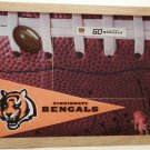 Cincinnati Pro Football Picture/Photo Frame 10-517
