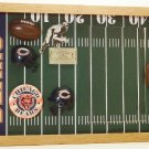 Chicago Pro Football Picture/Photo Frame 29-010