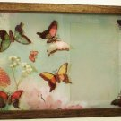 Butterfly Picture/Photo Frame 9276