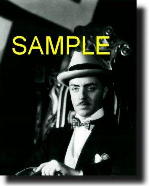 16X20 WILLIAM POWELL 1929 RARE VINTAGE PHOTO PRINT