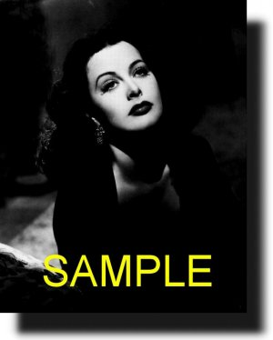 16X20 HEDY LAMARR 1942 GICLEE CANVAS PHOTO PRINT