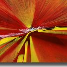 16X20 ORIGINAL ABSTRACT FICLEE CANVAS PRINT 059