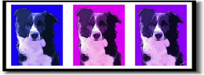 Original Pop Art Border Collie Dog Huge Panoramic Print