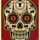 "Ernesto Yerena and Shepard Fairey ""Power and The Glory Day of the Dead Skull"""