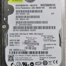 HP PAVILION TX1000 TX1200 TX1300 SERIES 250GB HDD HARD DRIVE 457061 455019 5400RPM