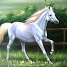Prancer  Equestrian Delight Horse Lovers Fantasy Oil Painting on Canvas (22240828264)