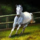 White Stallion on Canvas  Horse Lover's ArtOil Painting on Canvas (22240821914)