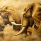 Elephants at Loggerheads Oil Painting on Canvas  (22232550890)