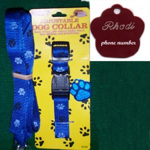 Engraved Blue Paw Dog Tag with matching collar & leash
