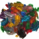 Spotted Guinea hen feathers 1/4 oz packet Body Plummage Mixed colors