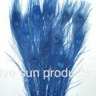 "100 Peacock Eye feathers ROYAL BLUE 30-35"" bleached  dyed"