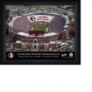 Florida State Seminoles Stadium Print With Your Name