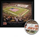Cincinnati Bengals Stadium Print With Your Name