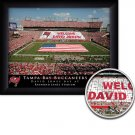 Tampa Bay Buccaneers Stadium Print With Your Name