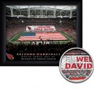 Arizona Cardinals Stadium Print With Your Name