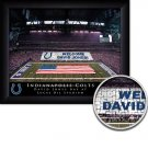 Indianapolis Colts Stadium Print With Your Name