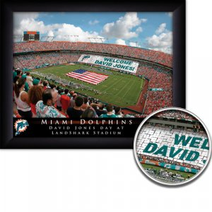 Miami Dolphins Stadium Print With Your Name