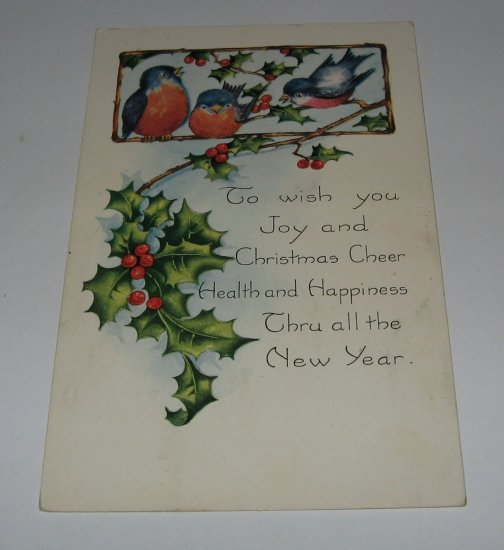 Bluebirds Christmas Postcard lot  c38