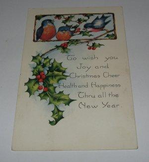Bluebirds Christmas Postcard lot  c38