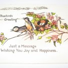 Bluebirds Greeting Postcard G3