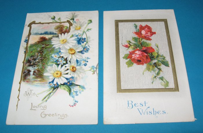 Daisy and Roses Postcards G8