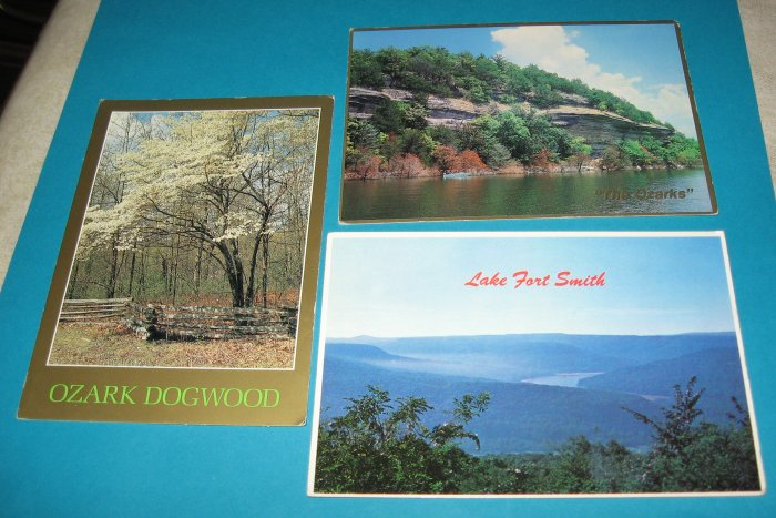 The Ozarks Arkansas postcards lot of 3 S2