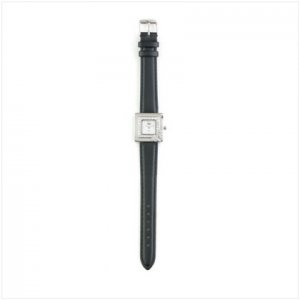 Null Silver Case Black Band Watch