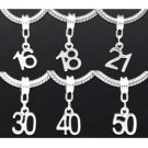 Number /Age Dangle DIY Beads Fit Charm Bracelet 250pcs free shipping